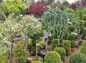 sklep ogrodniczy